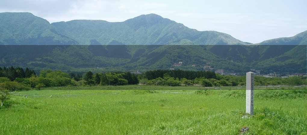 仙石原湿原05