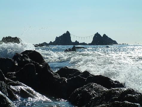 相模湾に面し様々な動植物が生息する地域