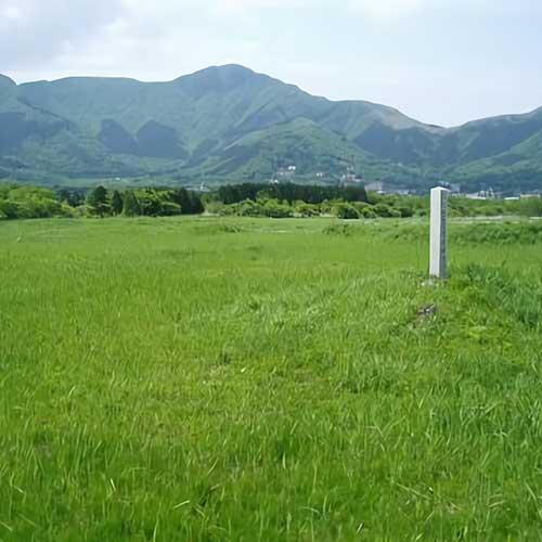 仙石原湿原イメージ