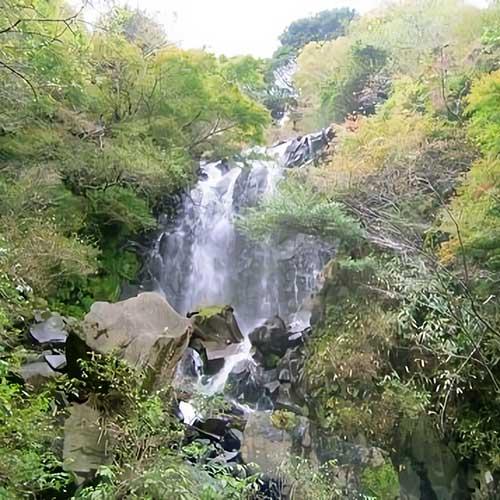 飛龍の滝と柱状節理イメージ