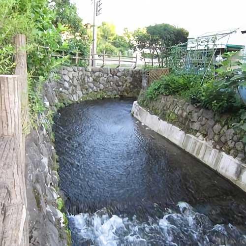 荻窪用水イメージ