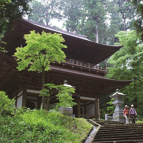 最乗寺と杉林イメージ