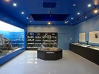 町立遠藤貝類博物館