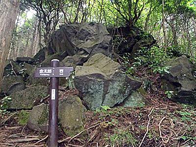 金太郎岩(流れ山)