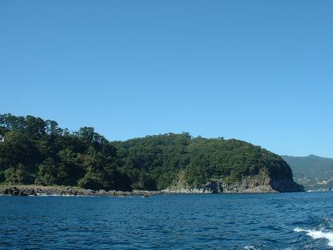 魚付き林と漁礁