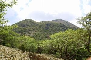 神山(かみやま)