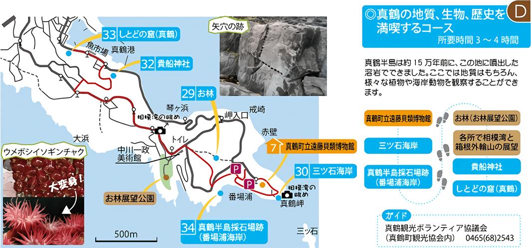 真鶴エリア(真鶴の地質、生物、歴史を満喫するコース)