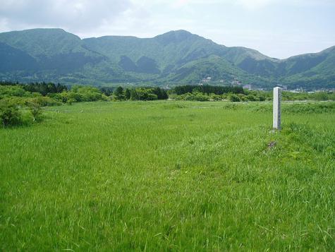 箱根仙石原湿原植物群落(はこねせんごくはらしつげんしょくぶつぐんらく)
